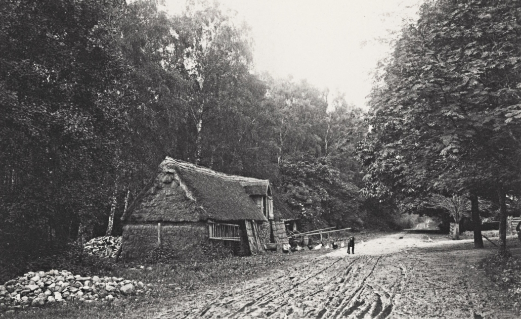 ein niedriges Haus, das mit Reet gedeckt ist, steht an einem Waldweg. Auf dem Weg blickt ein Hund zum Fotografen.
