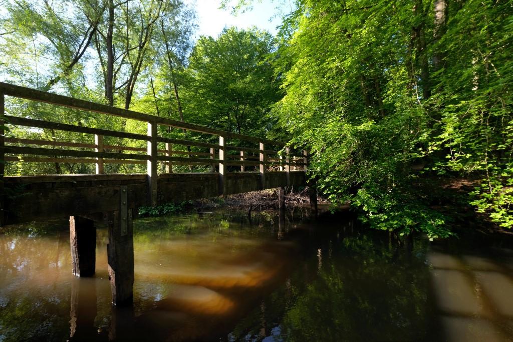 Eine Holzbrücke führt über einen schmalen Fluss, am anderen Ufer stehen Bäume.